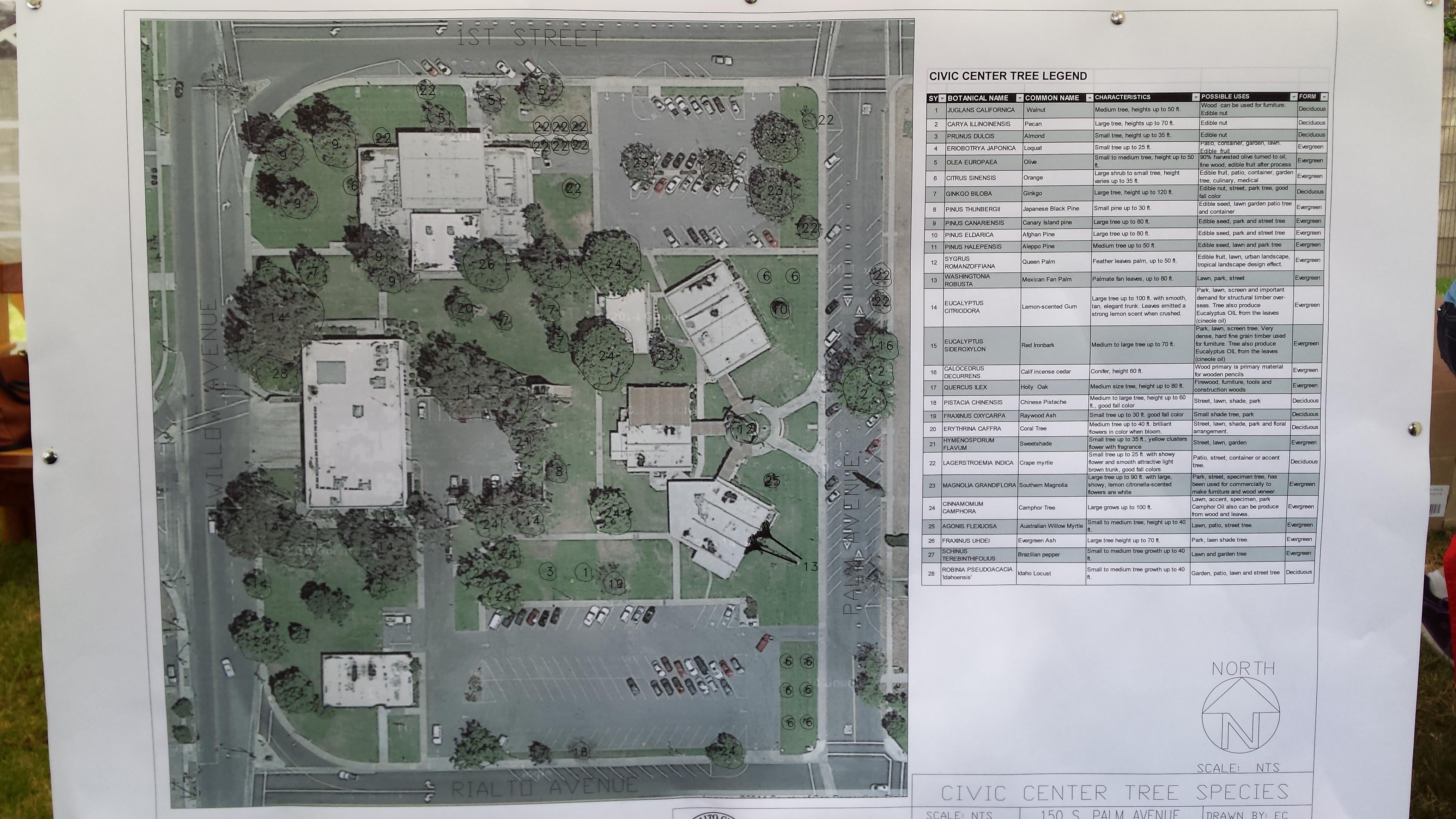 Colton High School Campus Map.Rialto Unified School Board Rialtonow
