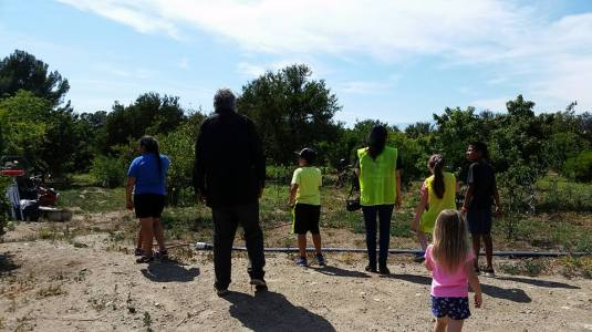 Students looking over the orchard with family owner John Adams