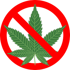 When Prop 64 was voted in by voters there were 2 types of people that  approved the measure. Those who wanted to smoke pot legally or didn't care  if other ...